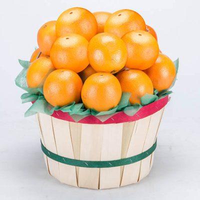 Florida Grove Baskets