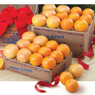 Combinations of Two Florida Citrus Fruits