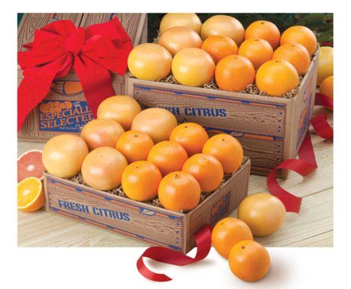 Orlando Tangelos and Grapefruit