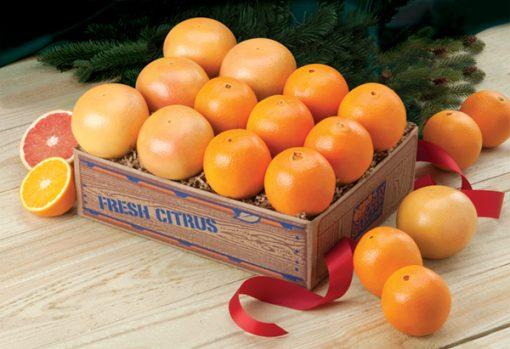 Valencia Oranges & Ruby Red Grapefruit