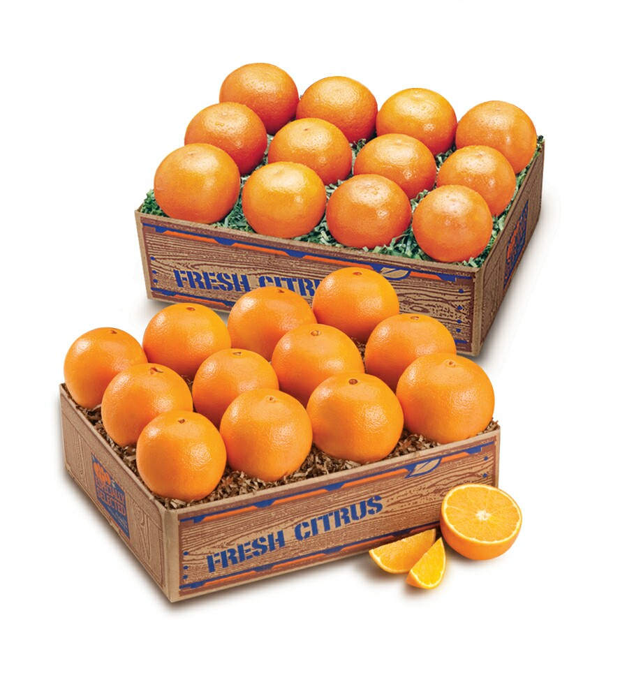 Pictures Of Oranges And Tangerines