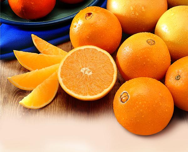 Florida Oranges