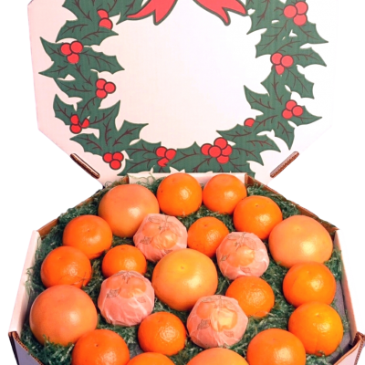 Citrus Christmas Wreath Gift
