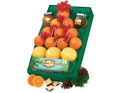 Citrus Christmas Tree Gift