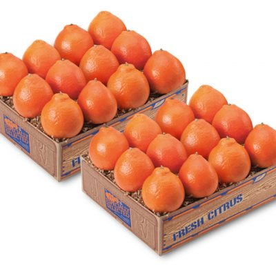 Florida Honeybell Oranges