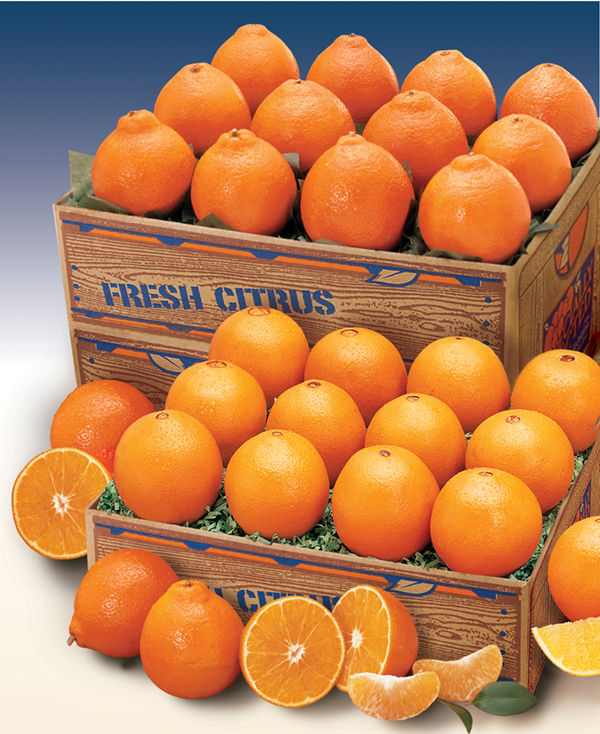 Navel Oranges and Honeybells