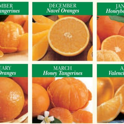monthly citrus gift plan