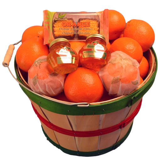 Florida Honeybells in Basket