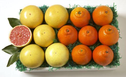 Honeybells and Grapefruit